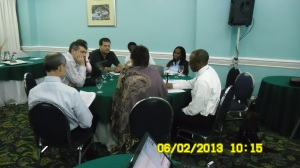 CARIWIG Workshop Participants Photo #1