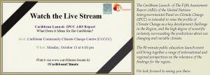 Live Stream Banner