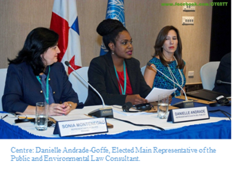 Centre: Danielle Andrade-Goffe, Elected Main Representative of the Public and Environmental Law Consultant.