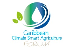 CCSA_Forum_Webinar_4_Ad_DRAFT_1__pptx