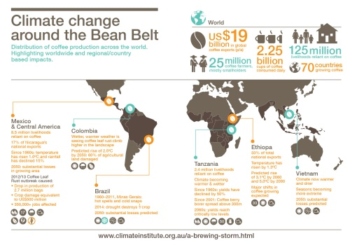 TCI_infographic_Bean_Belt_Map_standalone-01