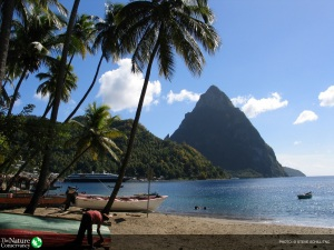 View of Saint Lucia piton mountains, photo credit: Steve Schill